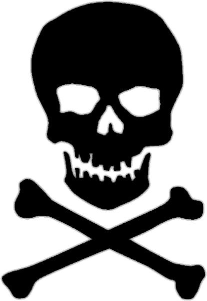 skull_n_bones