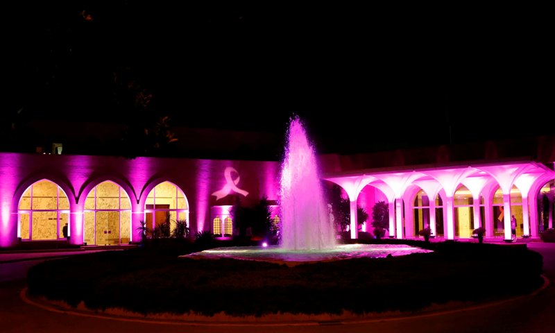Presidential-Palace-Turned-into-Pink